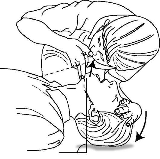 http://vmede.org/sait/content/Anatomija_topograficheskaja_sukov_xir_bol_2008/21_files/mb4_007.jpeg