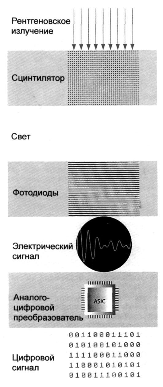 http://www.studmedlib.ru/cgi-bin/mb4x?usr_data=gd-image(doc,ISBN9785970429891-0005,pic_0016.jpg,-1,,00000000,)&hide_Cookie=yes