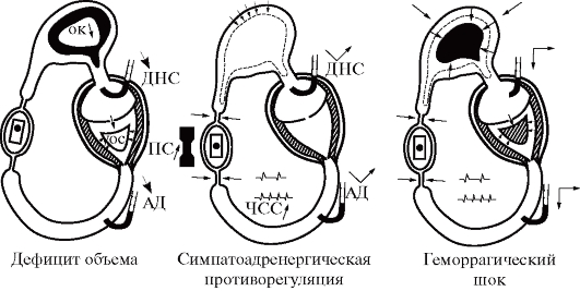 http://www.studmedlib.ru/cgi-bin/mb4x?usr_data=gd-image(doc,ISBN9785970424247-0011,pic_0051.jpg,-1,,00000000,)&hide_Cookie=yes